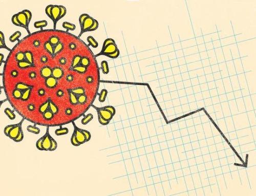Coronavirus et évolution du SEO